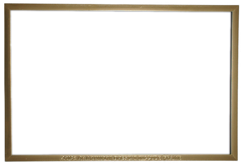 price of artwork doesn't include frame